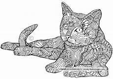 ausmalbilder erwachsene katze kostenlos zum ausdrucken