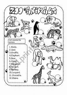 zoo animals esl worksheet by glamorous