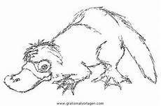 Tier Malvorlagen Quest Schnabeltier 4 Gratis Malvorlage In Tiere Verschiedene