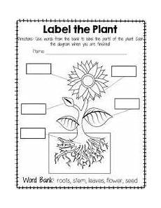 plants worksheets grade 2 13553 image result for worksheet on plants around us for grade 2 parts of a plant science