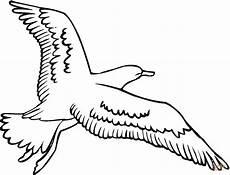 disegno gabbiano disegno di gabbiano in volo da colorare disegni da