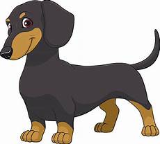 Dachshund Clipart Free best dachshund illustrations royalty free vector graphics