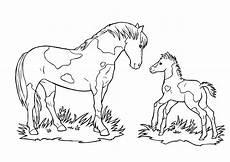 pferd mit fohlen ausmalbilder pferde fohlen ausmalbilder