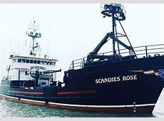 scandie rose crew