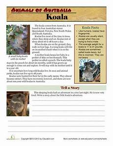 29 best australian unit school images pinterest australian animals australia and animaux