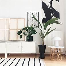 Pflanzen Dekoration Wohnzimmer Caseconrad