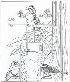 ausmalbild natur rund ums haus n vogel