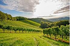 Die Besten Weinregionen In Frankreich Urlaubsguru De