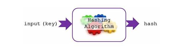 Hashing Algorithms For Storing Sensitive Data  101 Computing