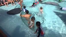 disney cruise line s disney dream swimming pool youtube