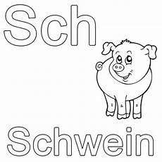 Malvorlagen Schule Abc Das Wort Schwein Beginnt Mit Den Buchstaben Sch So Lernen