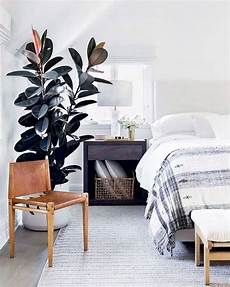 calming modern calming bedroom inspo schlafzimmer design schlafzimmer