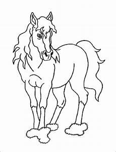 Ausmalbilder Info Pferde Ausmalbilder Pferde 24 Ausmalbilder Zum Ausdrucken