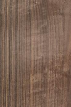 Nussbaum Amerikanisch Furnier Holzart Nussbaum Blatt