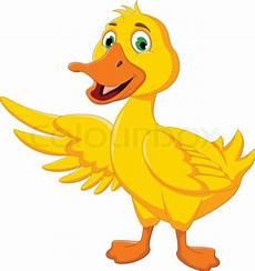 duck posing stock vector colourbox