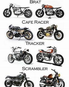 Cafe Racer Vs Brat