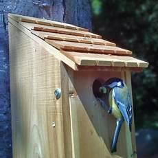 installer un nichoir pour oiseaux du jardin le magazine