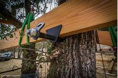 things you should before building a treehouse