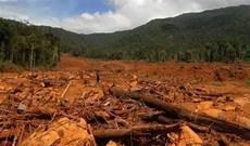Contoh Gambar Kerusakan Lingkungan Akibat Ulah Manusia