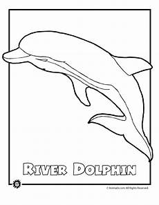 endangered animals coloring pages 16966 river dolphin endangered animal coloring page woo jr activities