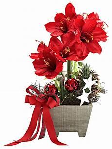Fleur De Noel Fleurs De Noel Artificielles