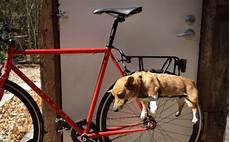 Diy Bike Basket Ideas