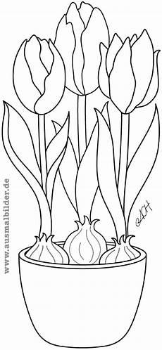 Malvorlagen Kostenlos Tulpen Ausmalbilder Tulpen Image Gallery
