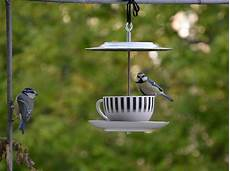 Mangiatoia Per Uccelli 25mq Di Verde