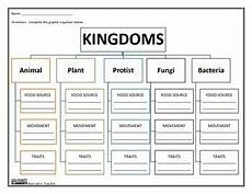 animal kingdom worksheets middle school 13932 kingdoms graphic organizer by innovative tpt