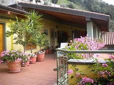 terrazzo fiorito tutto l anno fiori da balcone