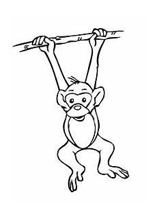 Malvorlagen Tiere Affen Affen Malvorlagen