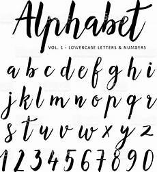 Vector Alphabet Script Font Brush Font