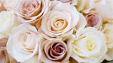 Low Cost Wedding Flowers 16 cheap wedding flowers that still look beautiful for