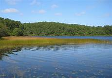 cape cod s kettle ponds are showing signs of climate change wbur news