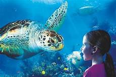 Timmendorf Sea Offers Discounts Cheap Tickets