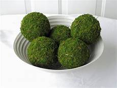 moss pomander balls set of 5 4 inch moss balls for home or