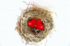 empty nest syndrom empty nest universal temple of healing