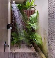fausse plante salle de bain et si on d 233 corait la salle de bain avec des plantes