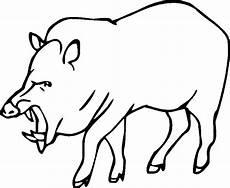Malvorlagen Tiere Kostenlos Umwandeln Malvorlage Wildschwein Frischling Coloring And Malvorlagan