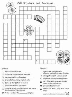 animal science worksheets for high school 14040 free cells worksheets 12 pages easy to from fransfreebies biology