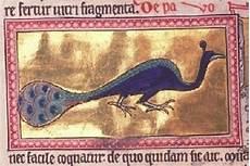 animale vanitoso medioevo mostruoso il pavone