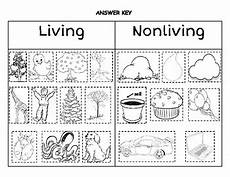 living vs nonliving sort by kindergarten kreative tpt