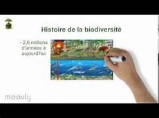 au cours capsule quot evolution de la biodiversit 233 au cours du temps