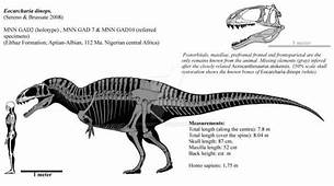 Eocharcharia Dinops By Franoys On DeviantArt  Extinct