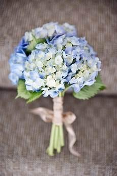 20 classic hydrangea wedding bouquets deer pearl flowers