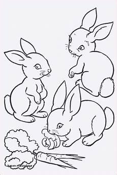 Malvorlagen Hasen Xxi Hase Malen Vorlage Frisch 25 Gut Aussehend Ausmalbilder