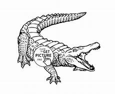 crocodile animals coloring pages for printable free