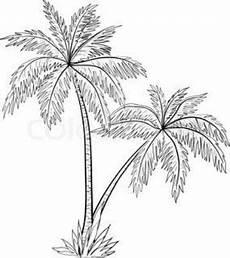 palma llanera para dibujar imagenes de palmeras para dibujar en caricatura con im 225 genes 193 rboles pintados palmera
