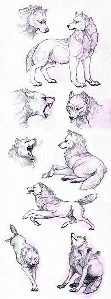 Malvorlagen Wolf Run 1652 Besten Zeichnen Bilder Auf