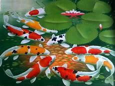 Jenis Dan Nama Ikan Koi Berdasarkan Kulit Dan Warnanya